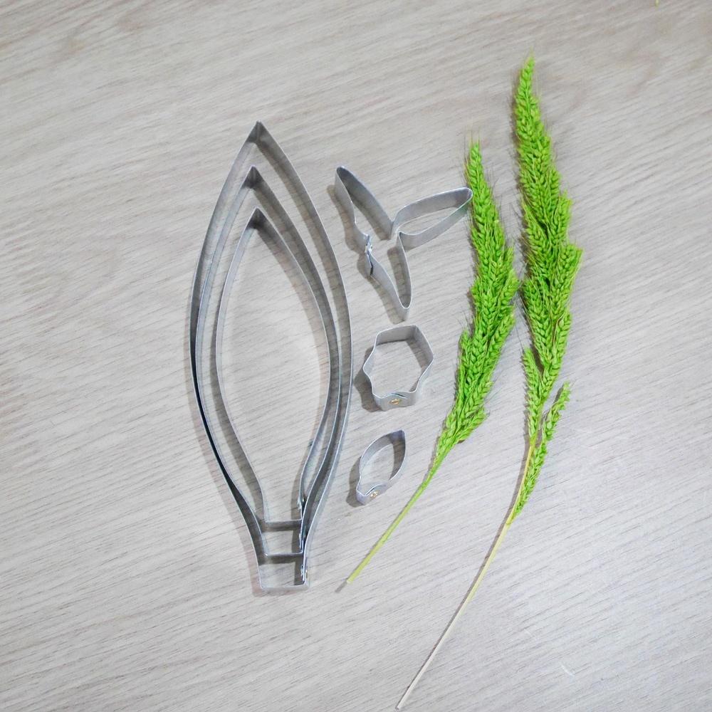 พิมพ์ตัด เหลืองจันทบูรณ์ (Den. friedericksianum cutter)