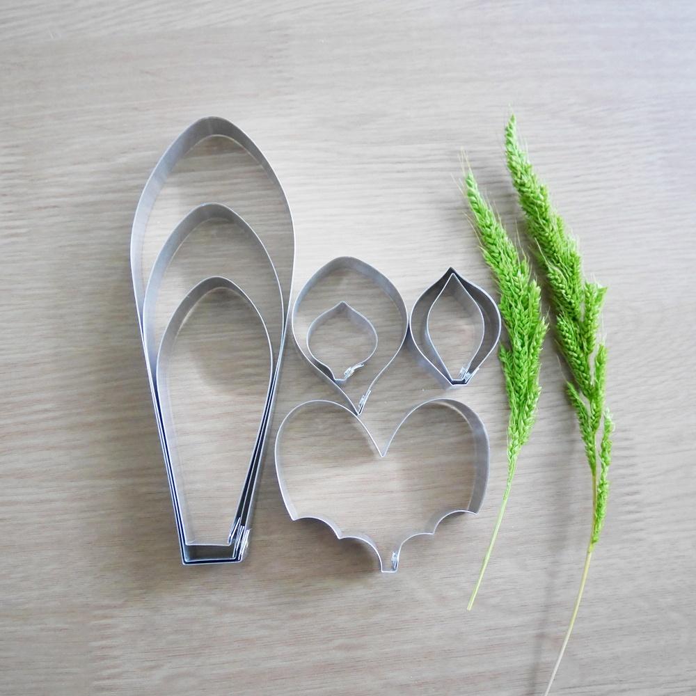 พิมพ์ตัด รองเท้านารี Delenatii M (Paph.Delenatii M cutter)