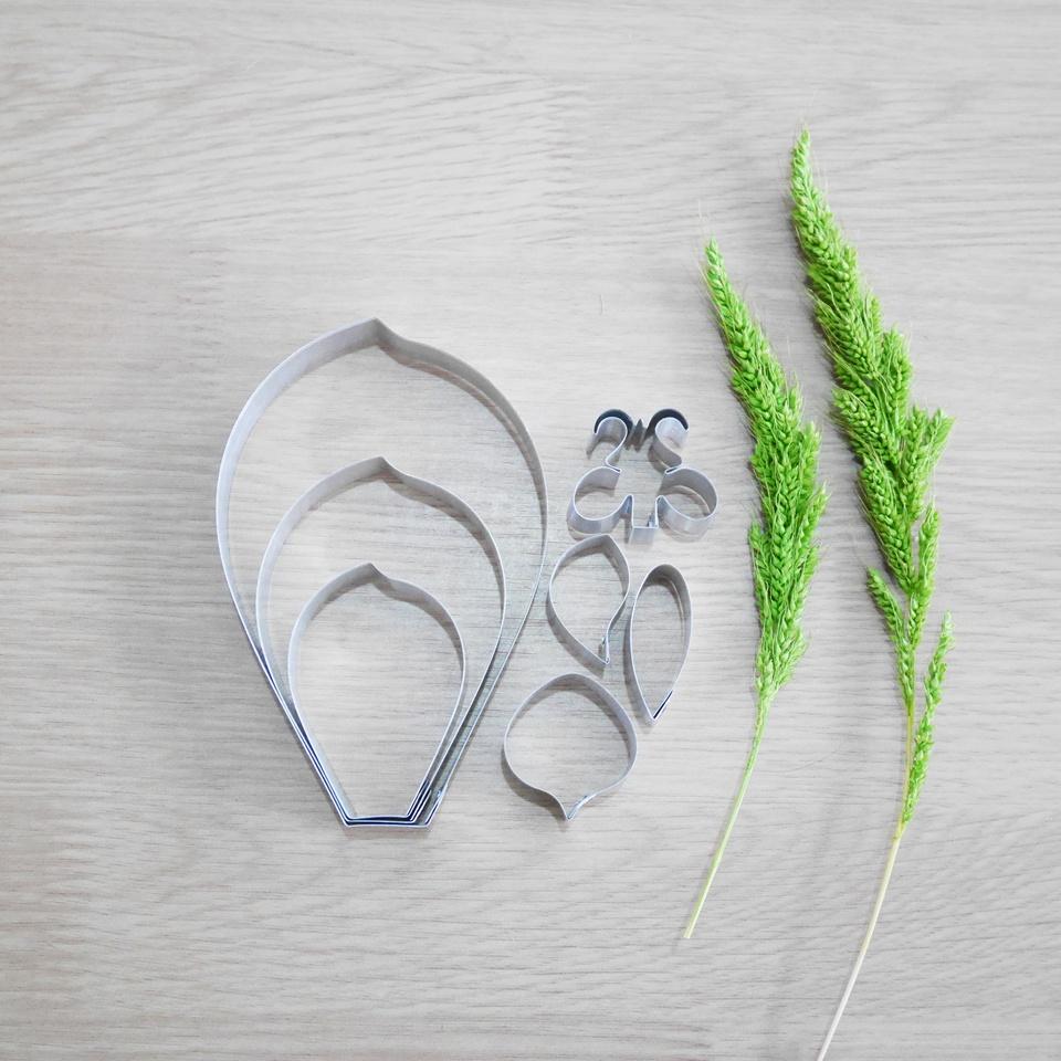 พิมพ์ตัด ฟาแลนนอปซีส S (Phalaenopsis S cutter)