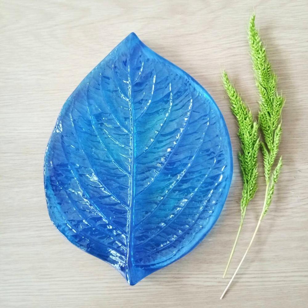 Sunflower leaf 2
