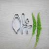 พิมพ์ตัด แมงปอ M (Arachnis maingayi M cutter)