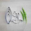 พิมพ์ตัด หวายซีซ่า (Dendrobium Caesar cutter)