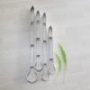 พิมพ์ตัด ใบซิมบิเดียม (Cymbidium Leaf cutter)