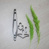 พิมพ์ตัด เอื้องแซะหอม (Dendrobium Scabrillingue cutter)