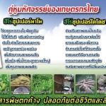 คุณสมบัติและประโยชน์ของอาหารเสริมพืช ฮีโร่นาโน