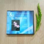 วีซีดีสาธิตการประดิษฐ์ดอกไม้จากดิน (หวาย)