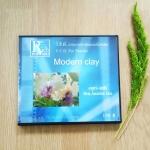 วีซีดีสาธิตการประดิษฐ์ดอกไม้จากดิน (อนุชาแฟร์)